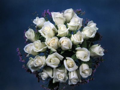 I like White roses(^-^)
