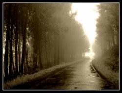 Todos los caminos ; Me conducen hacia tí.