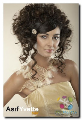 Hairstyle For Party