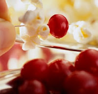 Cranberry & Popcorn Garland