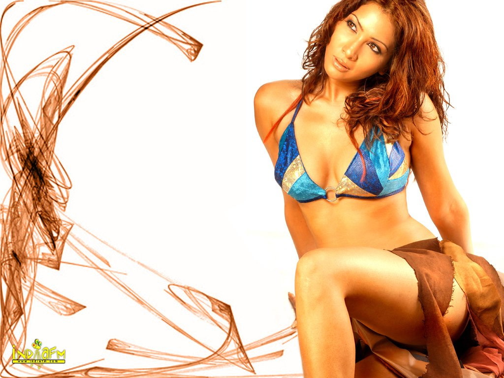 naked picture of kim sharma