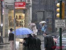 emmitouflés sous les parapluies
