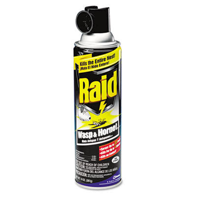 Can of Raid Wasp Spray