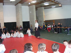 Aikido junior