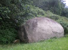 Pedra rochosa