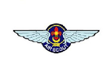 LOGO AIR SCOUT