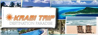 Booking Hotel Online With us