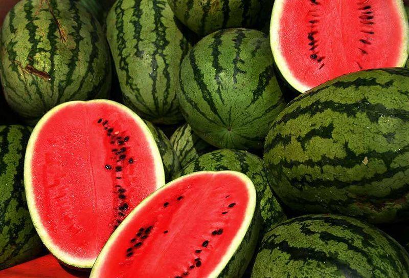 Watermelon Binge