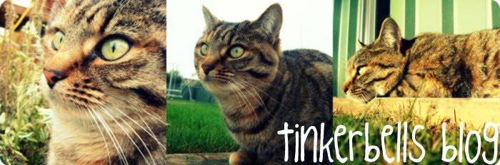Miss Tinkerbell