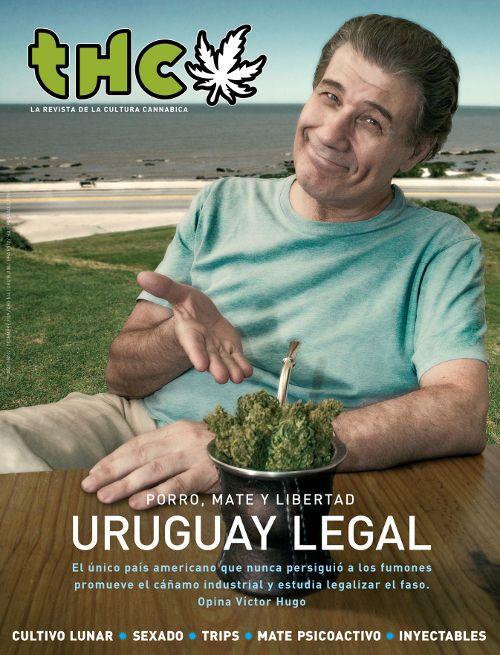 El mate prolonga el efecto de la marihuana?