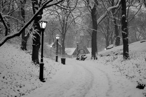 images of central park new york city. Last week New York City