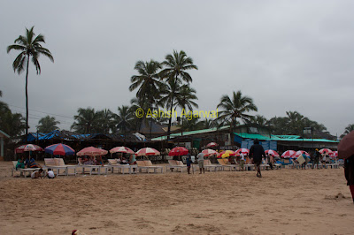 Line up of beach chairs at the Baga beach in Goa
