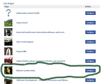 Selecting the Fan Page to which to auto-post the Netwrorked Blogs post to