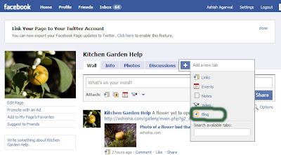Networked Blogs icon displaying on the Blog tab of the Fan Page, showing that Networked Blogs is now installed