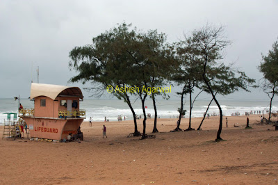 View of the Calangute beach in Goa from a distance.jpg
