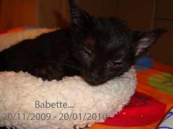 Mijn Babette...
