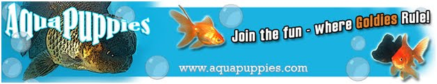 AquaPuppies.com - A Goldfish Community