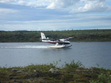 Summer landing