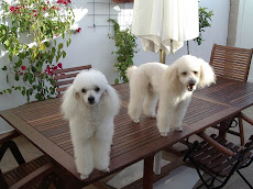 Kiko y Teo