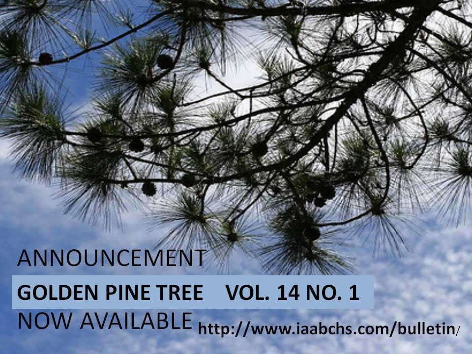 bchs61 tambayan your golden pine tree