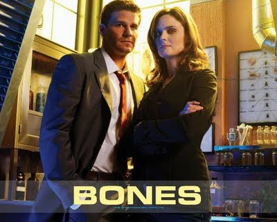 Watch Bones Season 5 Episode 13