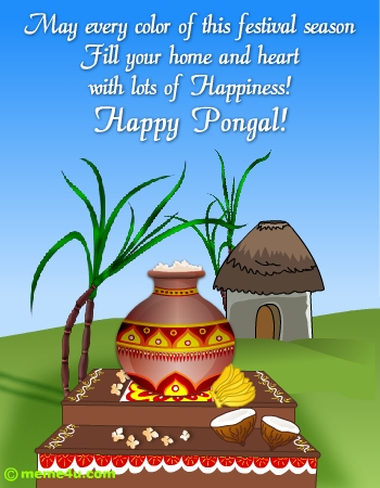 Wallpapers Of Pongal Festival. Pongal+festival+pictures