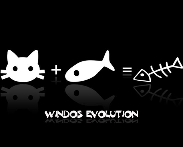 soccer wallpaper. Windos Evolution Wallpaper
