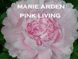 Marie Arden Pink Living
