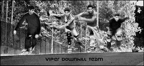 Inline Insane Viper Downhill Team