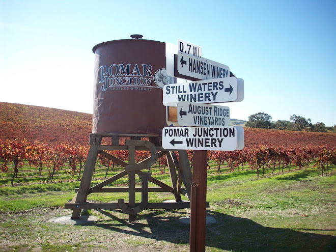 Wineries off the Beaten Track in Templeton
