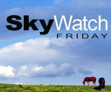 Your Skywatch Team: Klaus | Sandy | Ivar | Wren | Fishing Guy| Louise