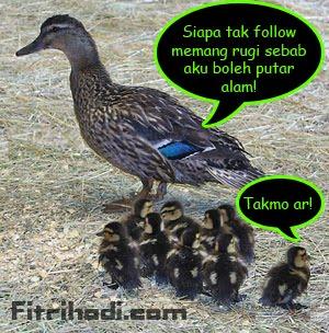 follow follower blog