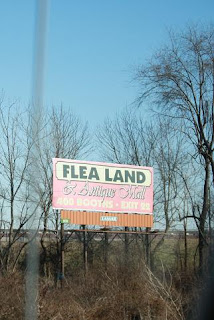 Road Sign: Flea Land!