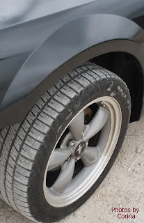 2002 Ford Mustang Fender & Tire with Mustang Rim