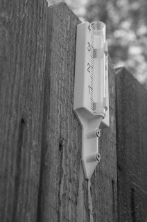 Black and White Photo of Rain Gauge
