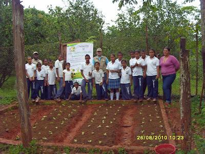 Proyectos De Aula Y Huertas Escolares