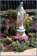 OUR MARY GARDEN