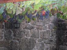 Quinta do Ermo