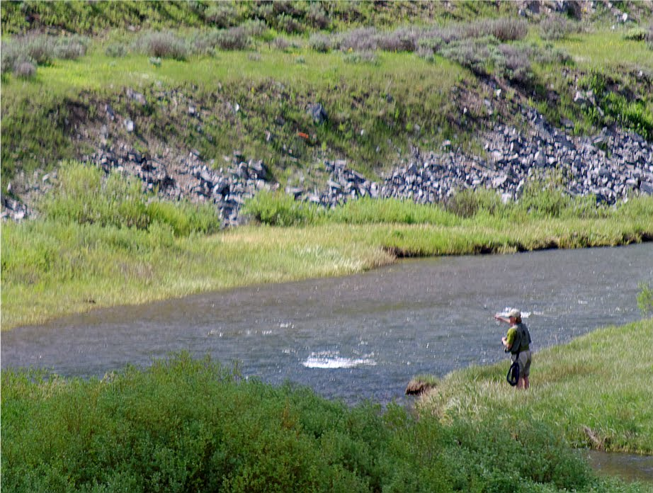 Fly fishing in yellowstone national park for Yellowstone national park fishing