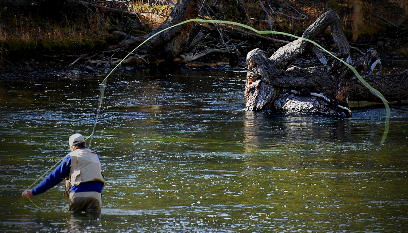 Fly fishing in yellowstone national park a day to remember for Bass fishing in colorado