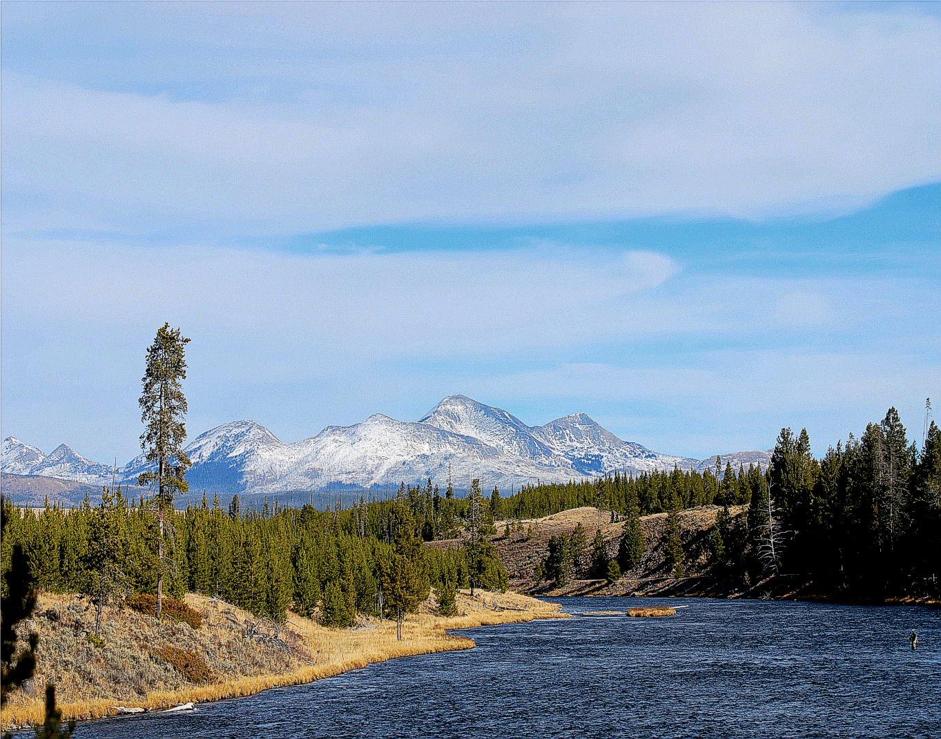 Fly fishing in yellowstone national park a day to remember for Yellowstone national park fishing
