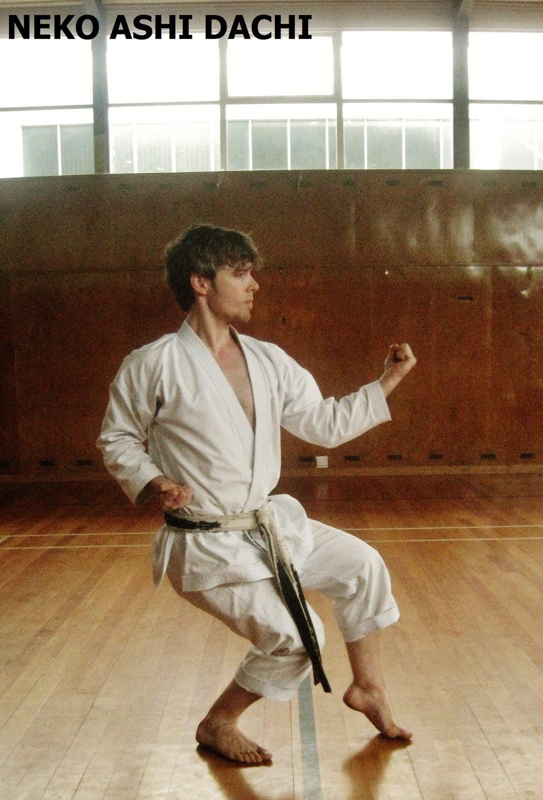Karate: golpes y defensas con codo y antebrazo NEKO_ASHI_DACHI__Junro-shodan__Andre_Bertel_