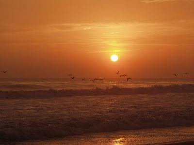 Playas de Paracas