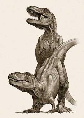 Tiranosaurios copulando
