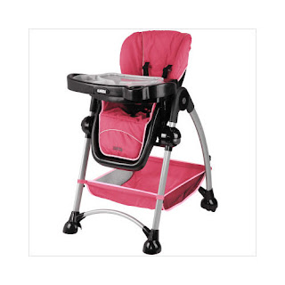 Www.dylanpfohl.com: Graco High Chair Pink - Graco High ...