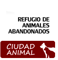 Ciudad Animal