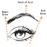 Krista skin pro eyebrowse dos and donts here is another diagram this one is showing how to achieve correct shape based on the eye alone this does work in come cases but i almost always base my ccuart Gallery