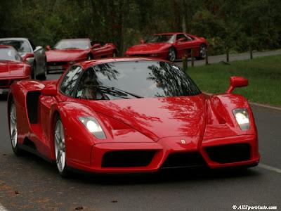 Ferrari Enzo cars