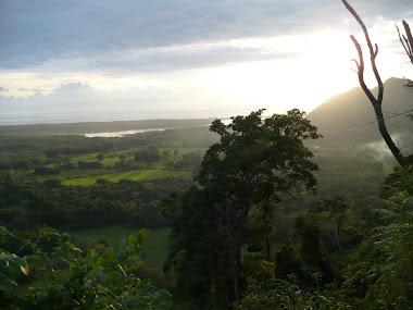 Vista del Gran Río Térraba  y la desembocadura al mar