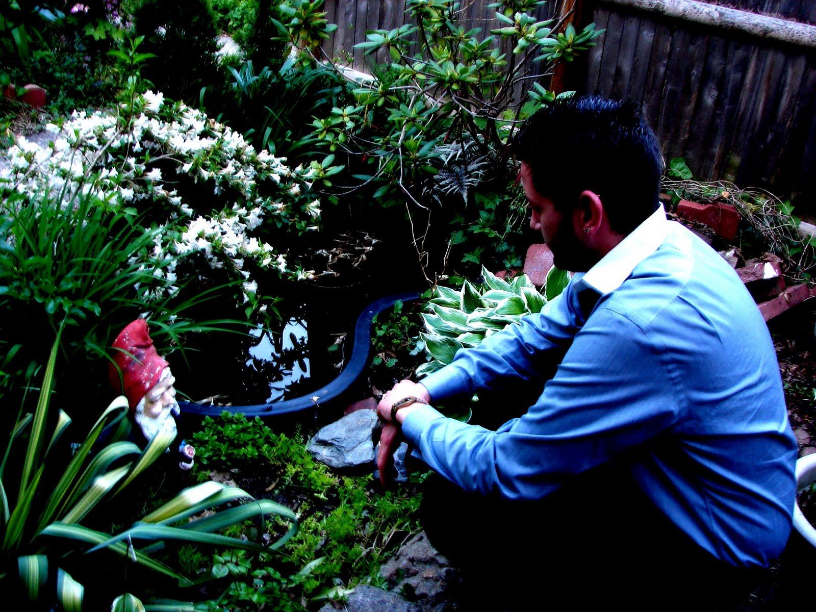 Pasek Allen Family The Garden Troll And The Lovely Swan
